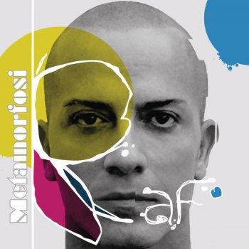 Copertina dell'album metamorfosi di raf